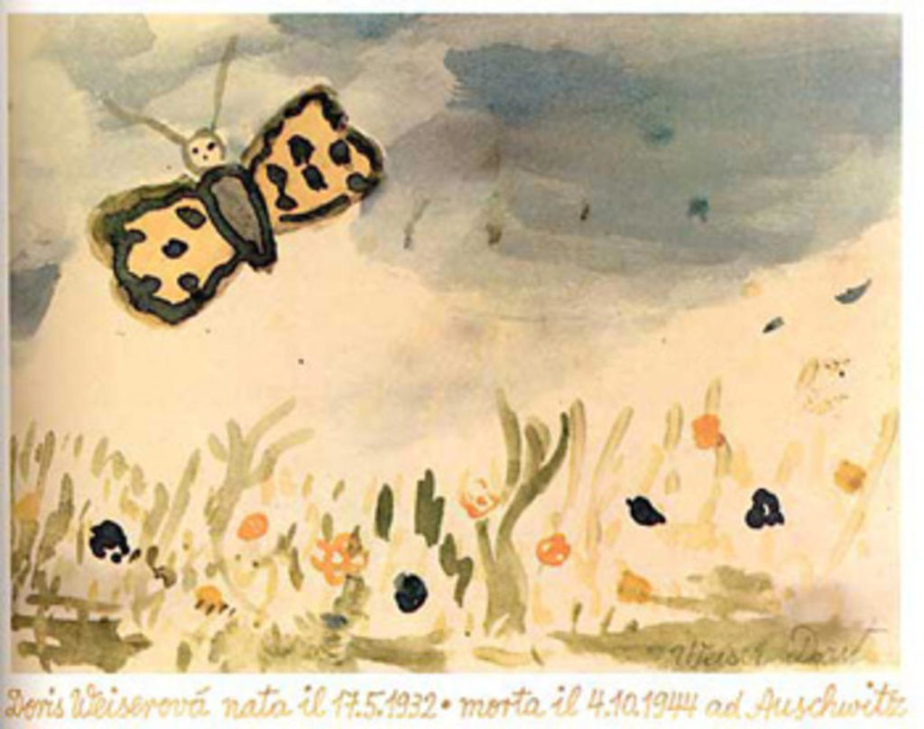 farfalla gialla terezin